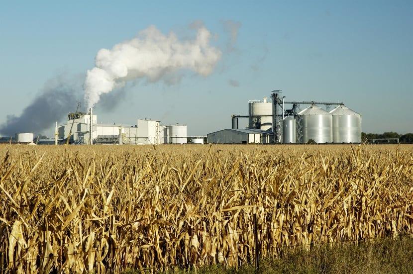 Contaminación por producir etanol
