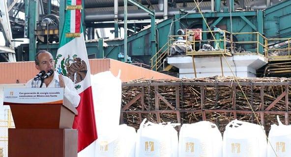 planta de energía de biomasa en México