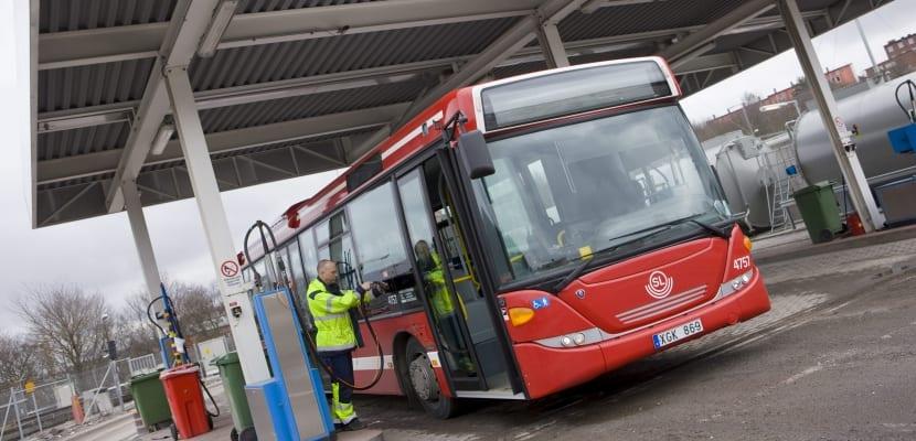 Autobus Suecia