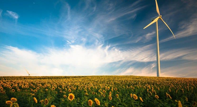 Empresas responsables con el medio ambiente
