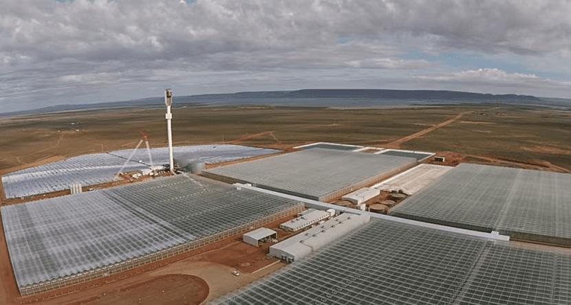 invernadero-renovable