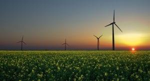 Energías renovables y autoconsumo