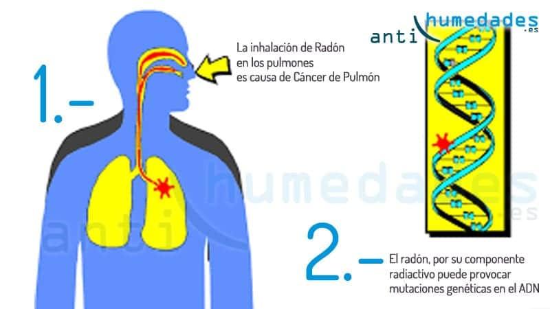 efectos del radón en la salud