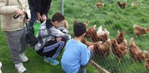 granja escuela