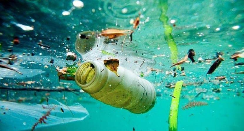 para el 2050 habrá más plásticos que peces en el mar