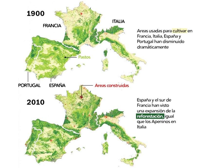 En España no hay deforestación