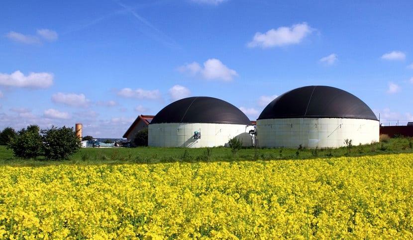 generación de biogás con pre-tratamiento