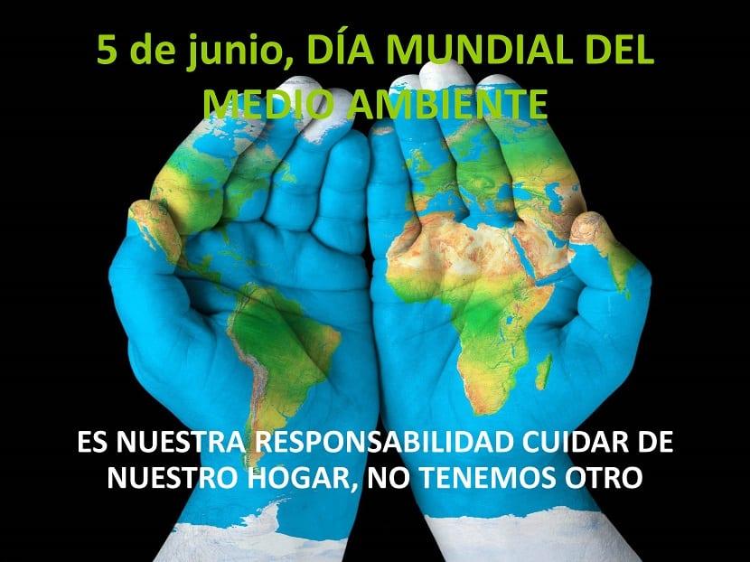 hoy es el día mundial del medioambiente y protegerlo es cosa de todos