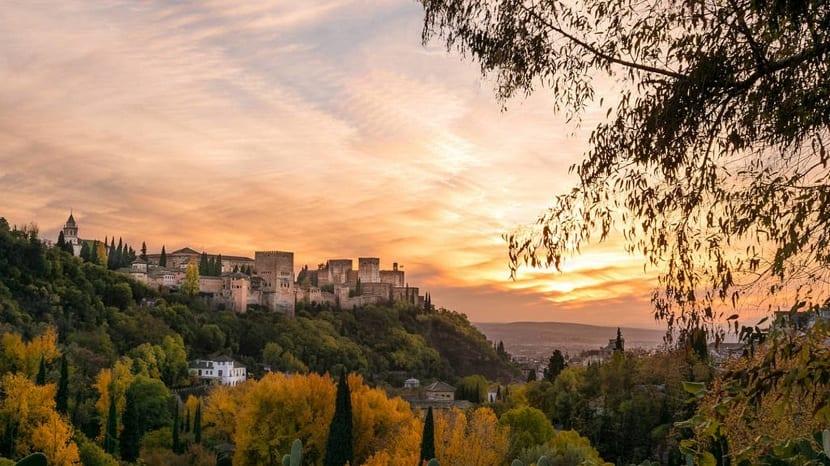 en los alrededores de la Alhambra viven los erizos