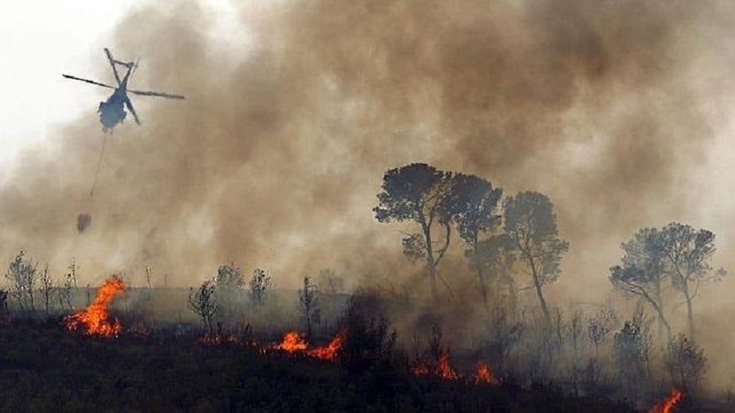 los incendios forestales cada vez son más frecuentes