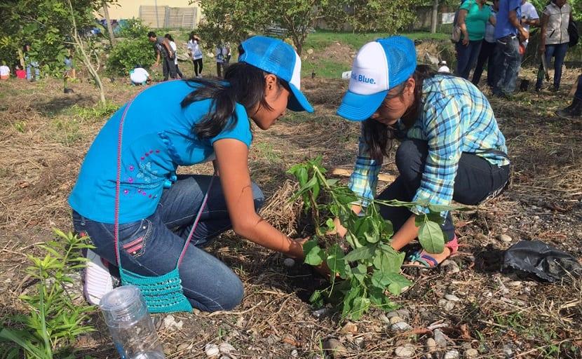 Día mundial del medioambiente el 5 de junio