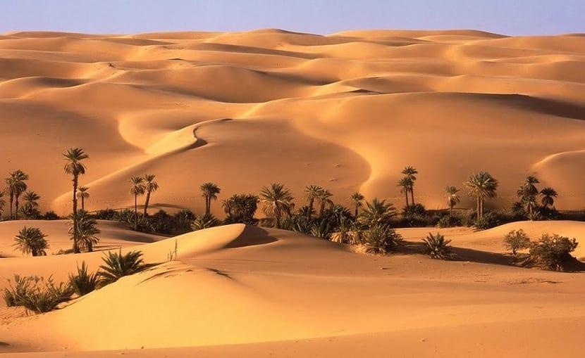 los desiertos sí son ecosistemas naturales