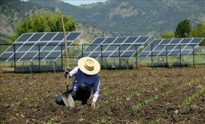 energia solar en agricultura
