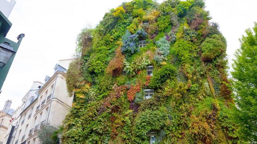 jardín vertical, una solución a la contaminación atmosférica en las ciudades