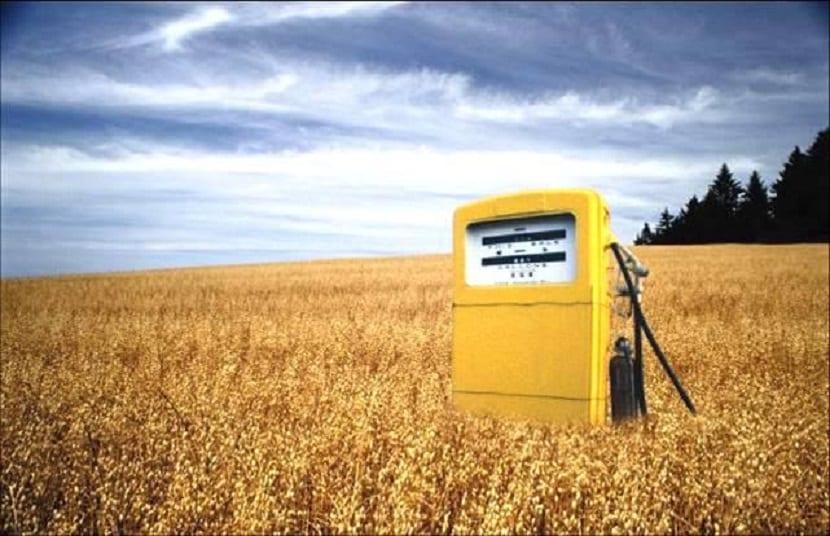 Futuro biocarburantes