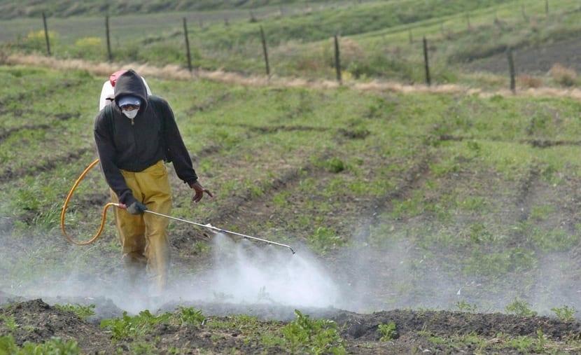 Uso excesivo de fertilizantes nitrogenados
