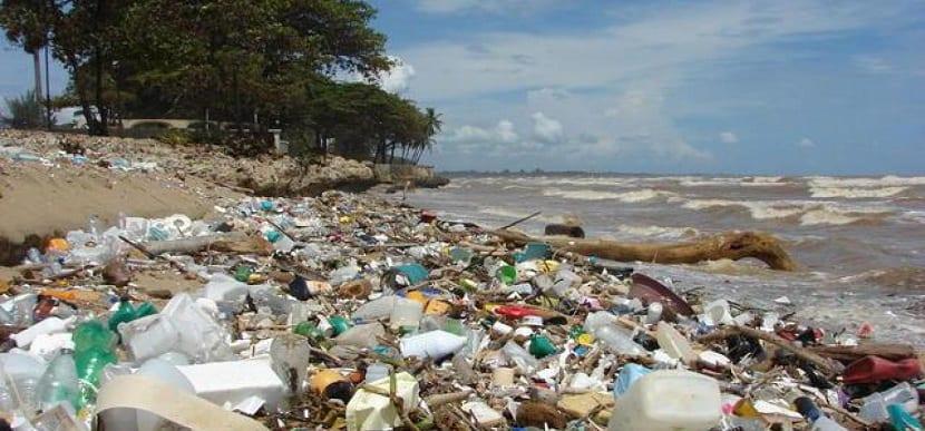 residuos plásticos contaminando las costas y mares