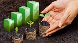el desarrollo sostenible es de vital importancia para el futuro