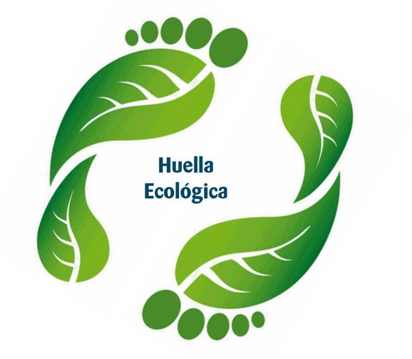 impacto ambiental del ciudadano, la huella ecológica