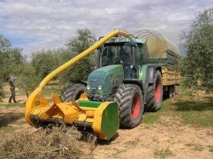 biomasa agricola