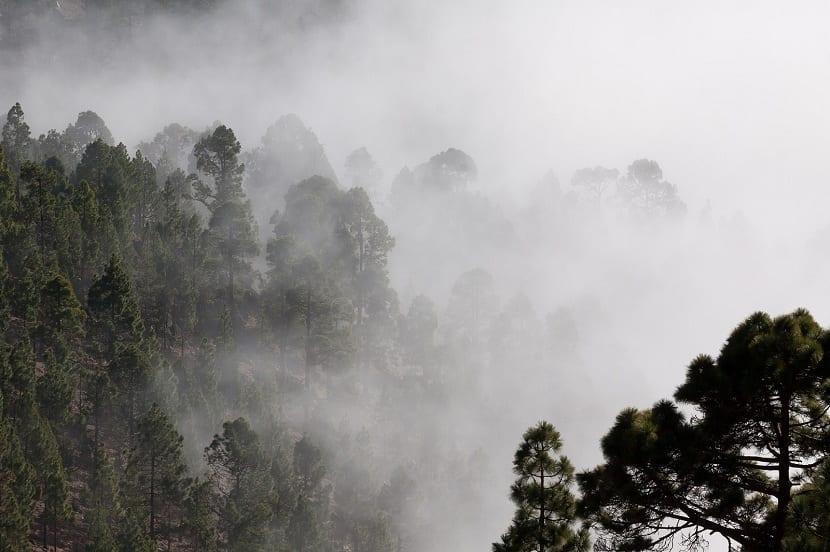 el aire siempre contiene vapor de agua