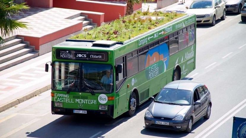 autobus con un cesped
