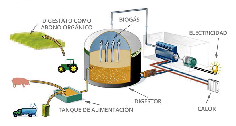 producción de biogás