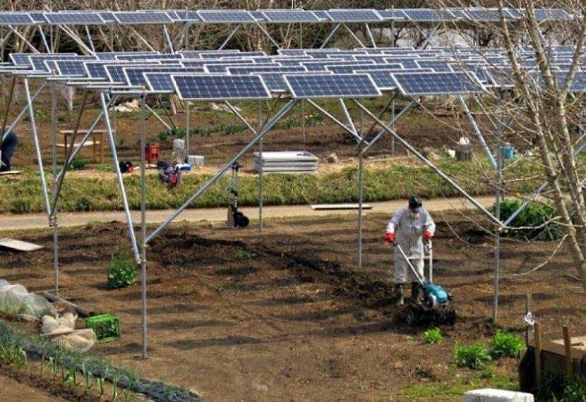 uso de la energía solar fotovoltaica en el ámbito agrícola