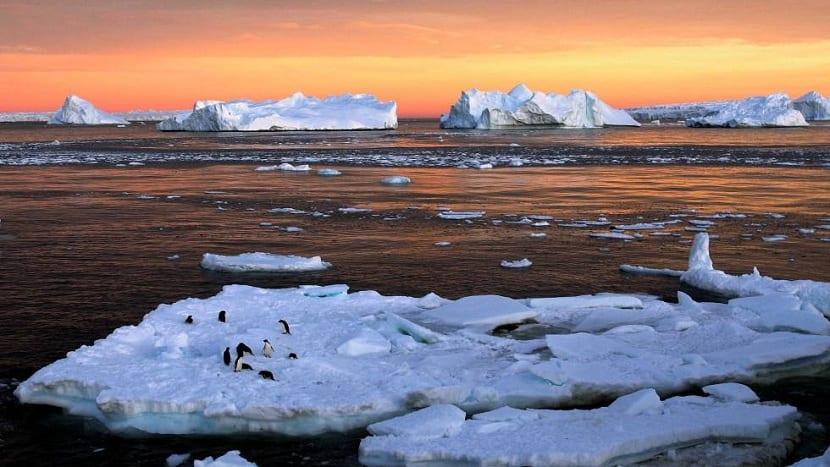 derretimiento de los casquetes polares