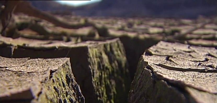 desertizacion del suelo