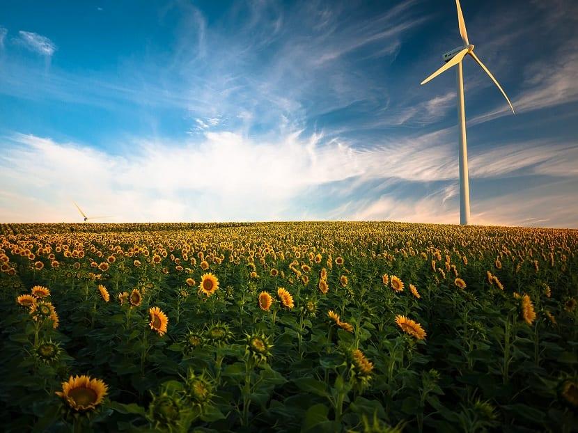 transicion hacia las renovables