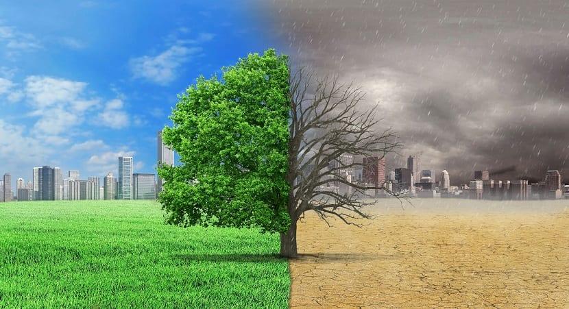 Aspectos del medioambiente