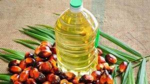 Es malo el aceite de palma