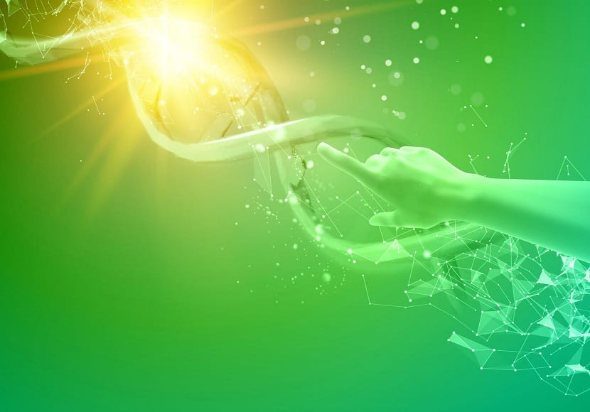 Importancia de la biotecnologia