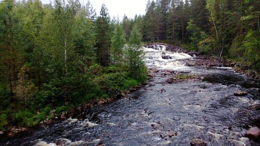 Agua como ejemplo de ser inerte