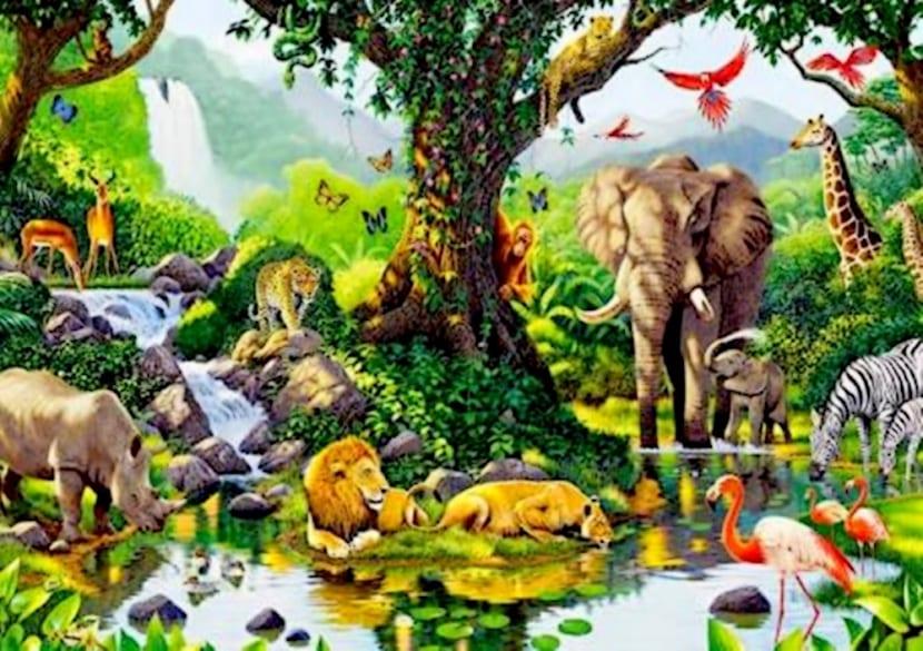 Nicho ecologico y animales