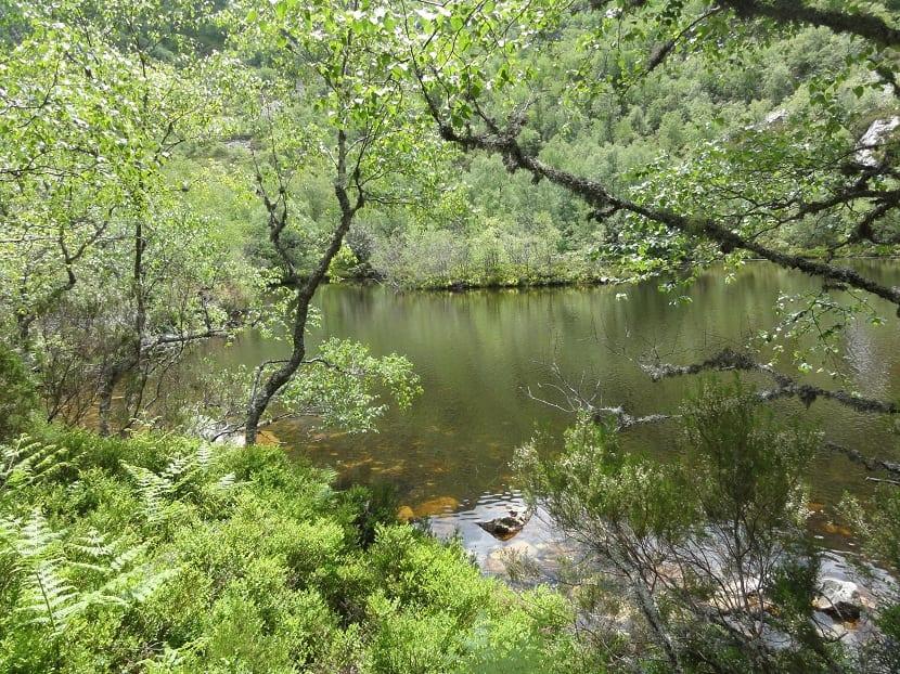 Reserva hidrológica española