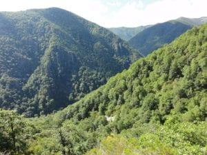 Reserva natural integral