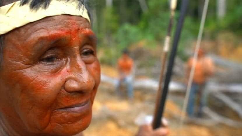 Guardianes del Amazonas