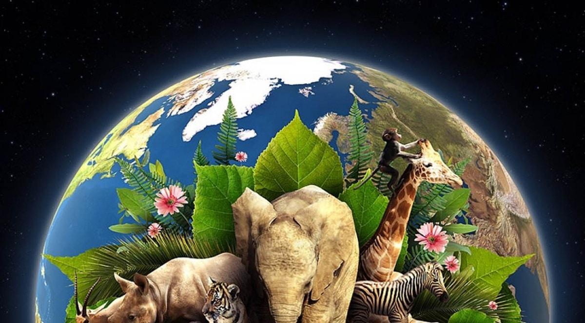Celebración del día de la Tierra