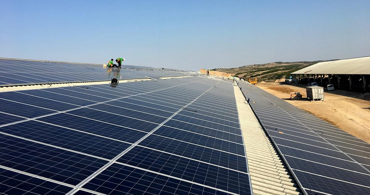 Subastas renovables