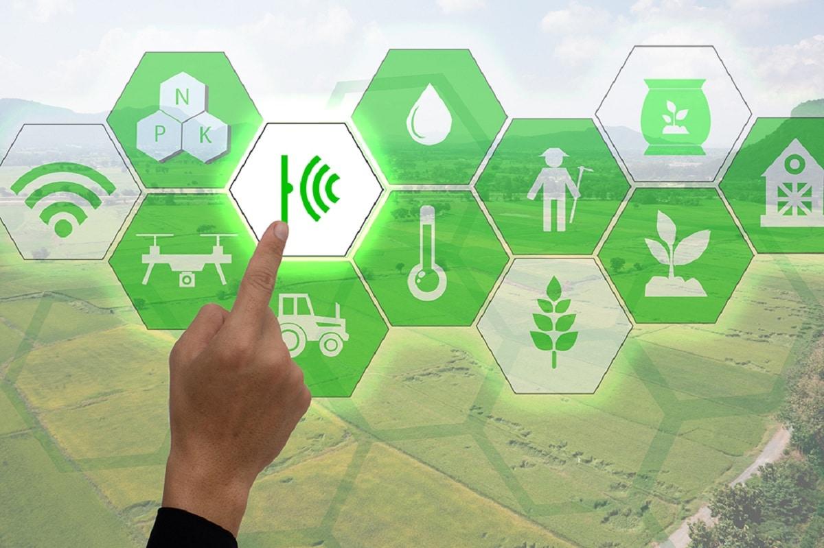 mejoras del empleo verde