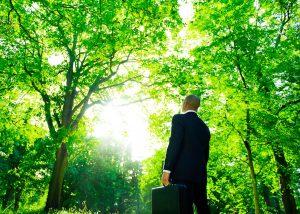 características de la consultoría ambiental
