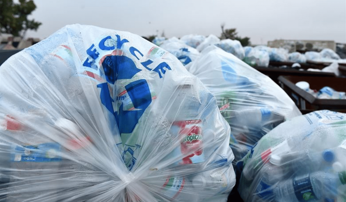 reciclaje de bolsas
