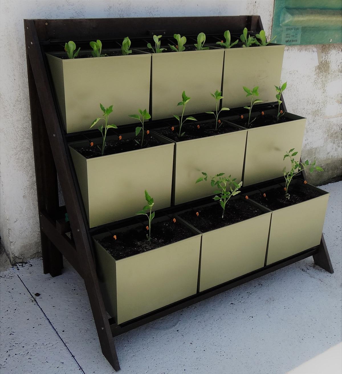 cajas en vertical