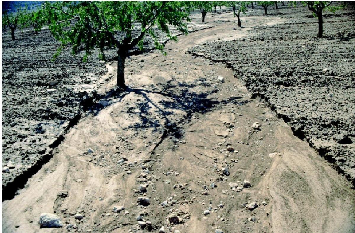factores de erosion del suelo