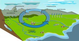 pasos del ciclo hidrologico