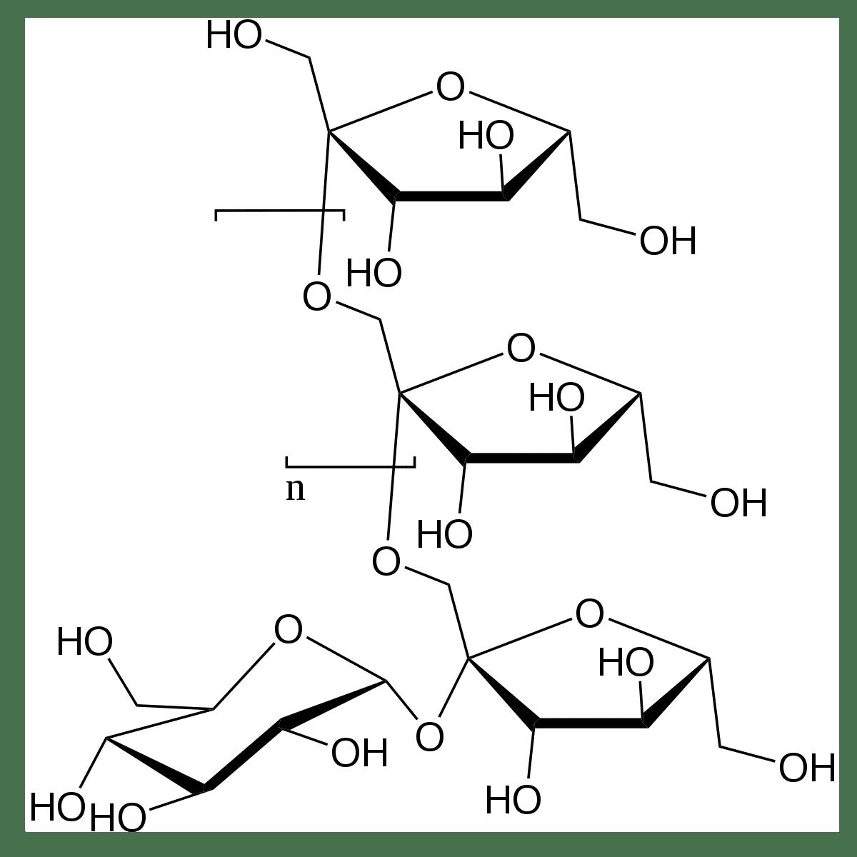 cadenas de hidratos de carbono