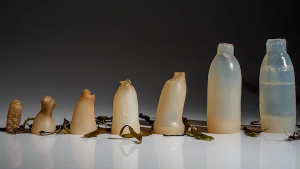 plasticos biodegradables para contaminar menos