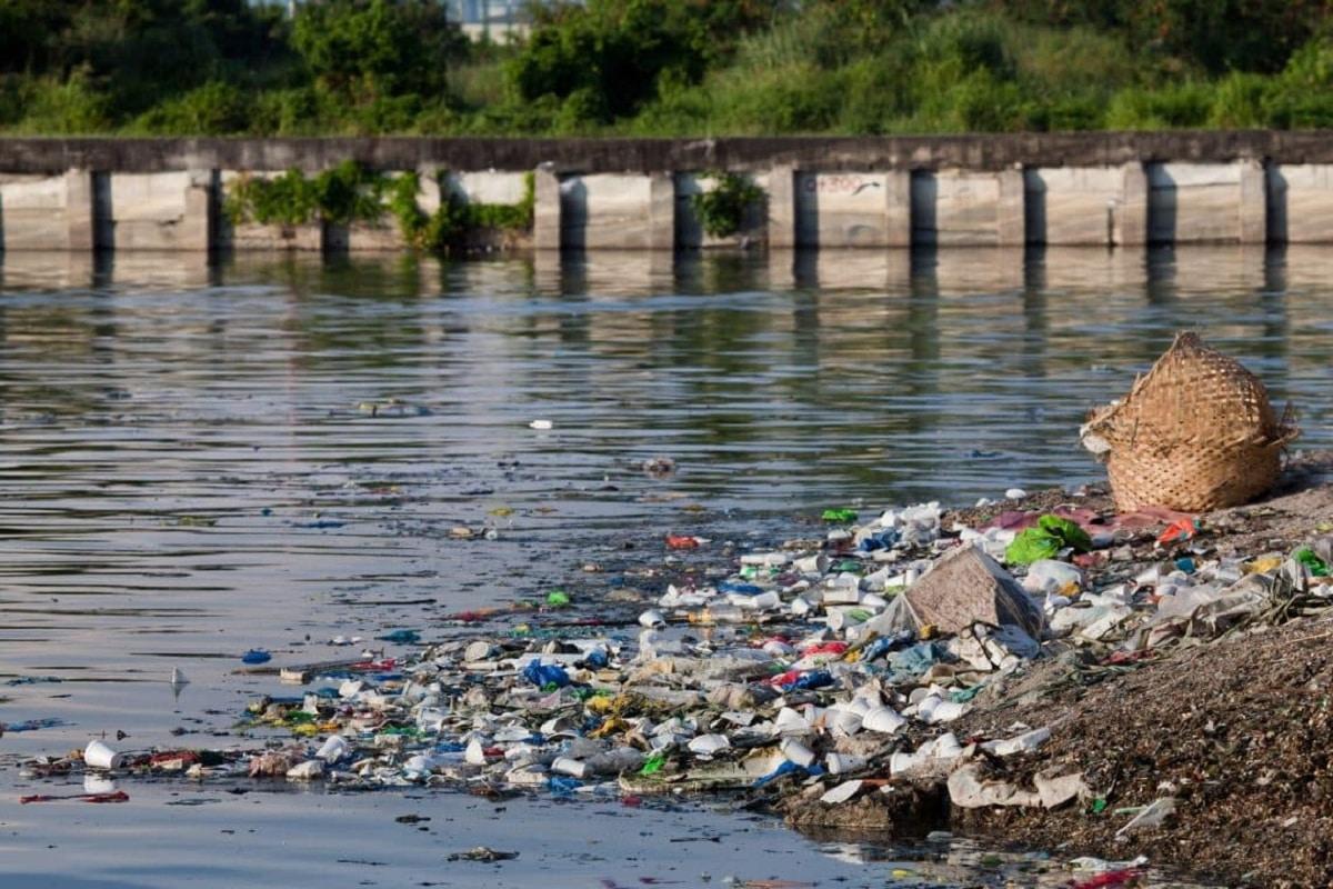 degradacion de ecosistemas acuaticos